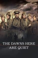 Nonton film The Dawns Here Are Quiet (A zori zdes tikhie) (2015) terbaru